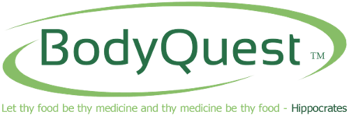 BodyQuest, Logo